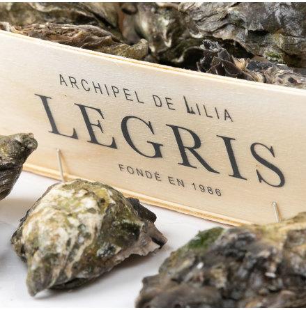 Ostron Lilia Legris 3
