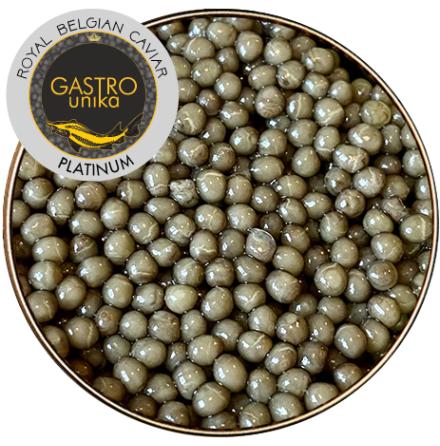 Caviar GASTROunika-Platinum